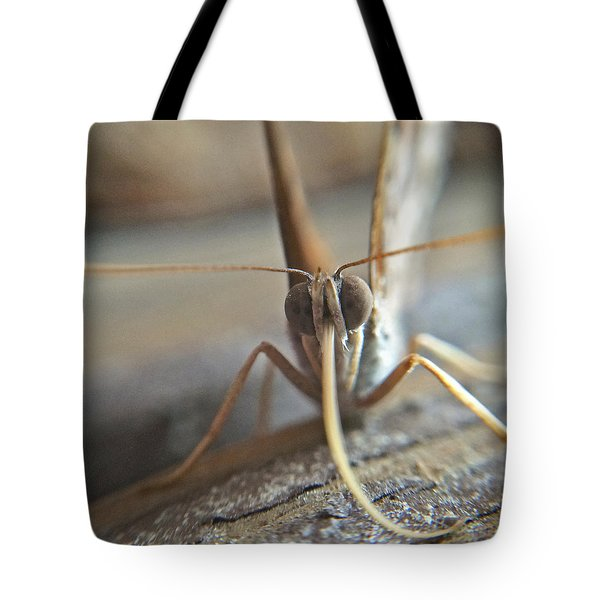 Tote Bag featuring the photograph Moth Face To Face Macro by Robyn Stacey