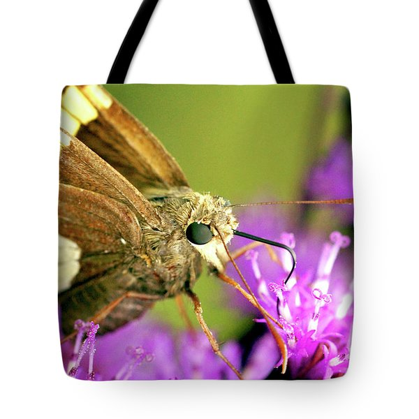 Moth On Purple Flower Tote Bag by Meta Gatschenberger