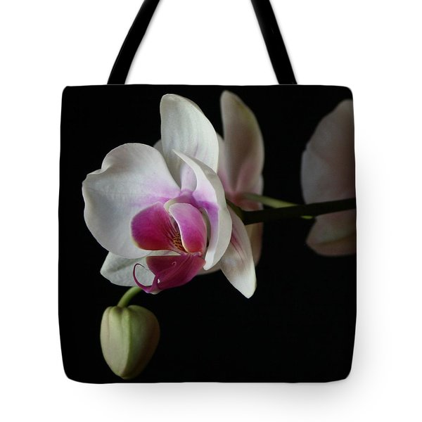 Moth Orchid 1 Tote Bag by Marna Edwards Flavell