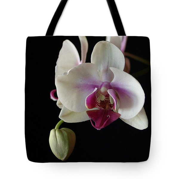 Moth Orchid 2 Tote Bag by Marna Edwards Flavell