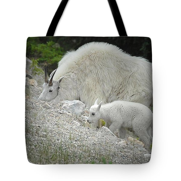 Tote Bag featuring the photograph Mother And Baby   by Dyle   Warren