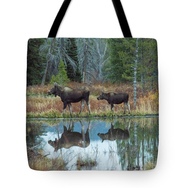 Mother And Baby Moose Reflection Tote Bag by Rebecca Margraf