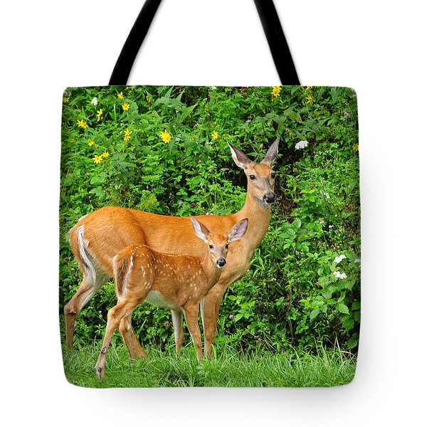 Tote Bag featuring the photograph Mother And Baby  White-tailed  Deer by Lara Ellis