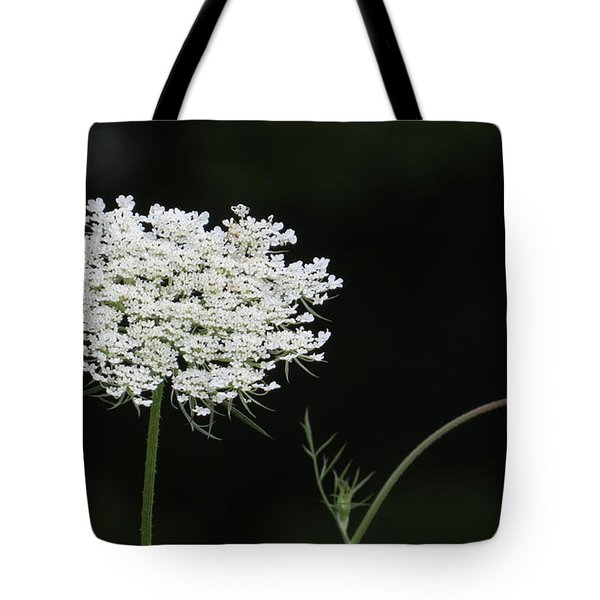 Mother And Child Tote Bag