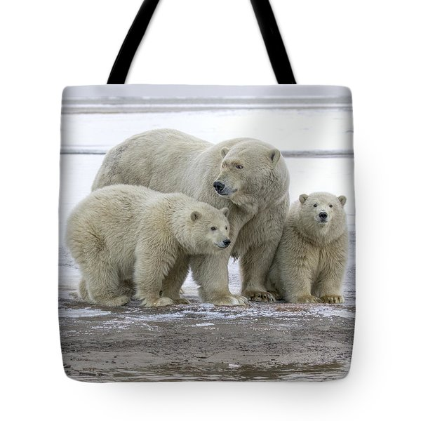 Mother And Cubs In The Arctic Tote Bag
