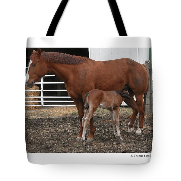 Mother And Daughter Tote Bag by R Thomas Berner