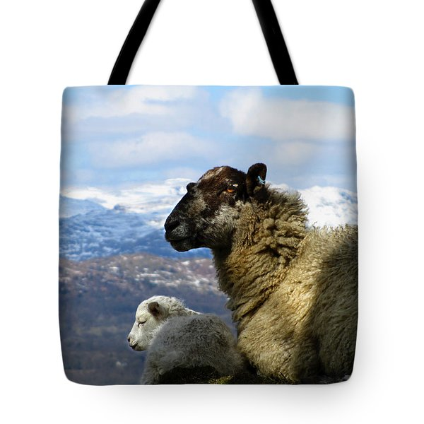 Mother And Lamb Tote Bag