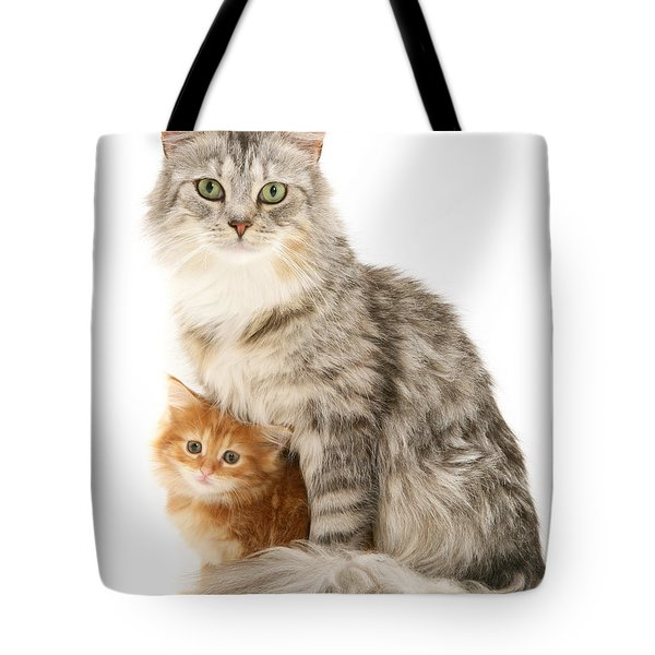 Mother Cat And Ginger Kitten Tote Bag