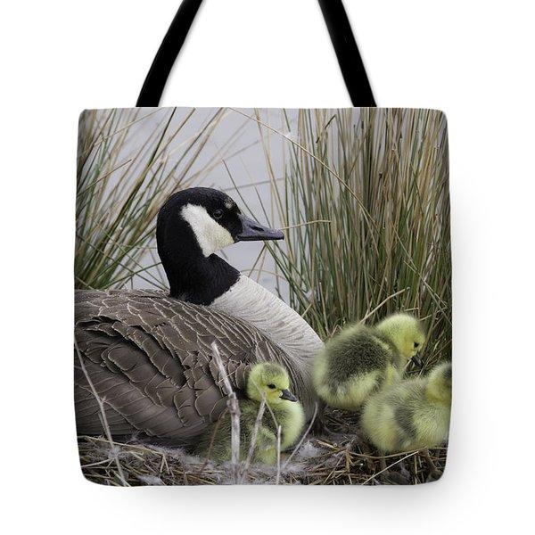 Mother Goose Tote Bag by Jeannette Hunt