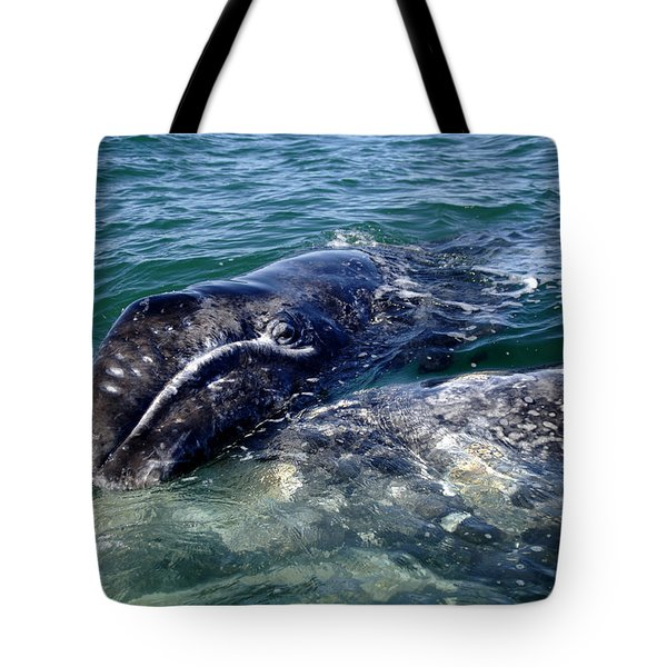 Mother Grey Whale And Baby Calf Tote Bag