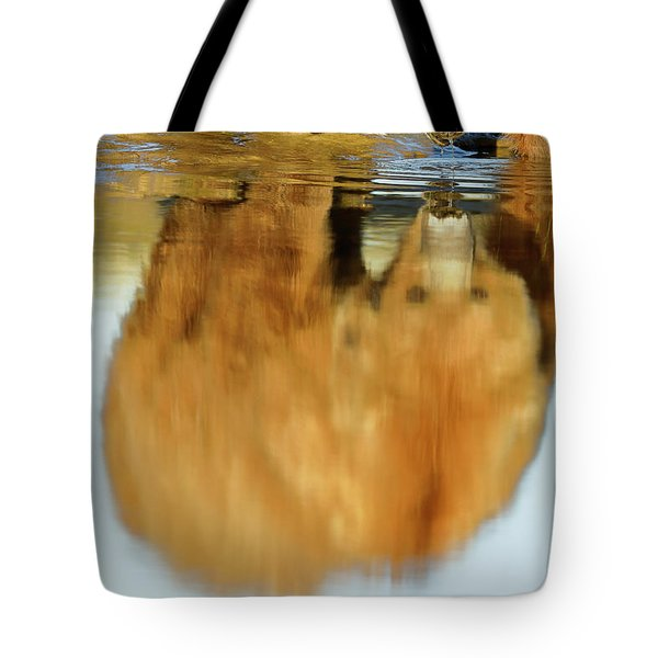 Mother Grizzly Reflection Tote Bag