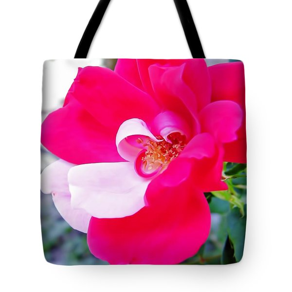 Mother - Natures - Best Tote Bag