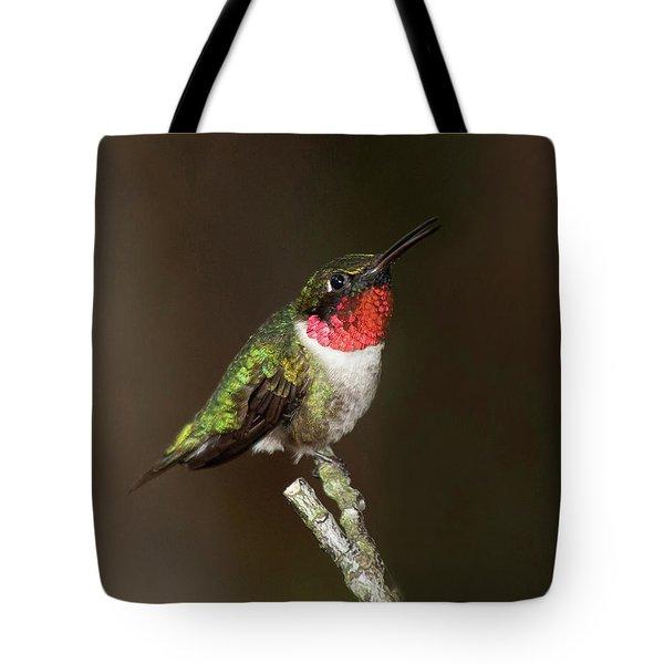 Mother Nature's Jewel Box Tote Bag