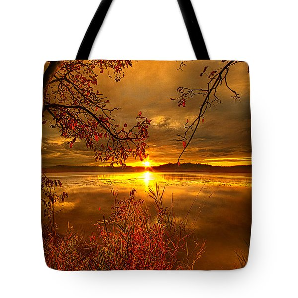Mother Nature's Son Tote Bag