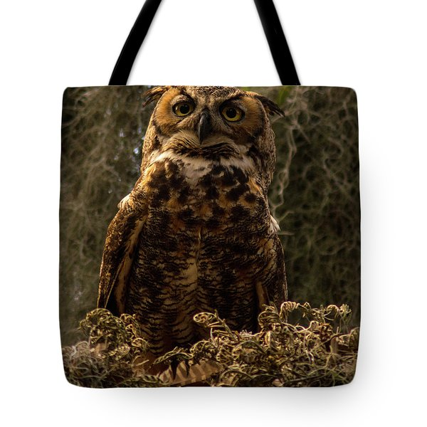 Mother Owl Posing Tote Bag by Jane Axman