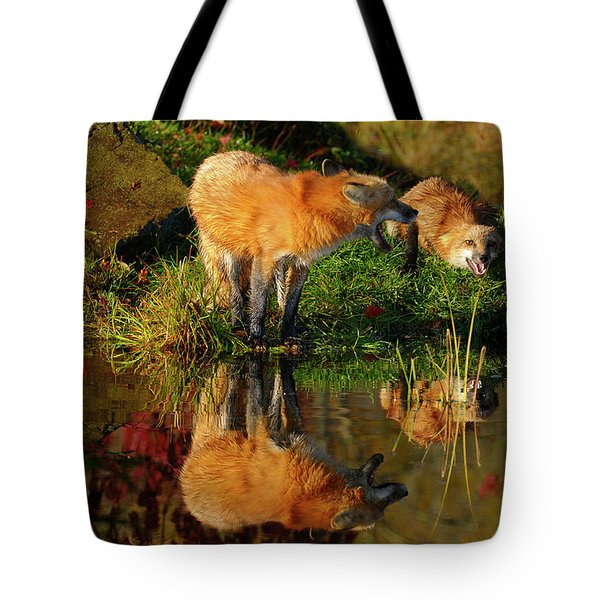 Mother Red Fox Warning Submissive Young Kit With A Yelp By The W Tote Bag