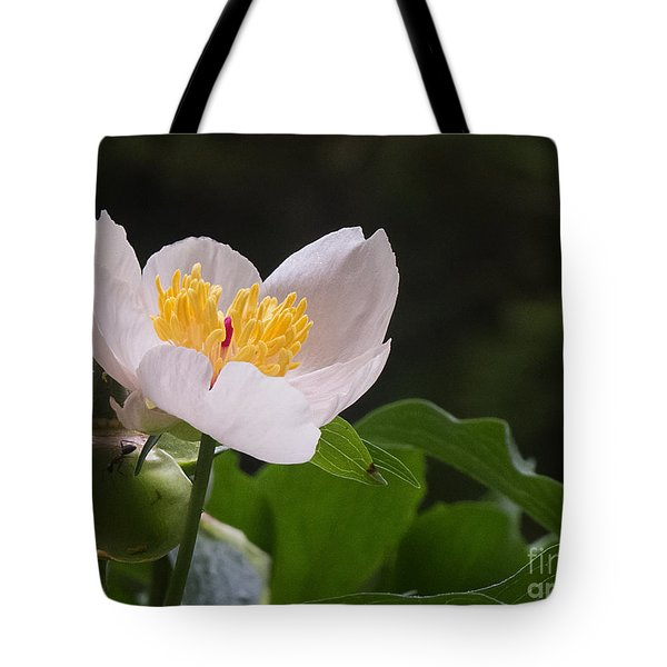 Mothers Day Peony Tote Bag