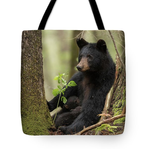 Mothers Loving Care Tote Bag