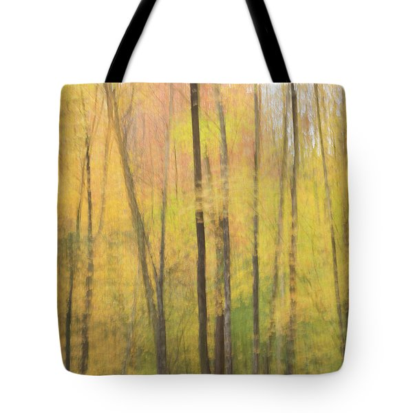 Motion In Color Tote Bag