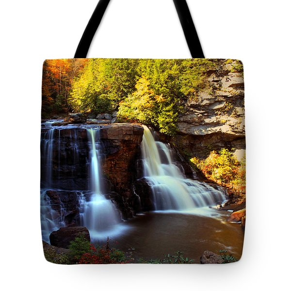 Motion Tote Bag by Mitch Cat