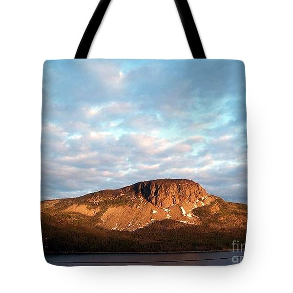 Mottled Sky Of Late Spring Tote Bag by Barbara Griffin