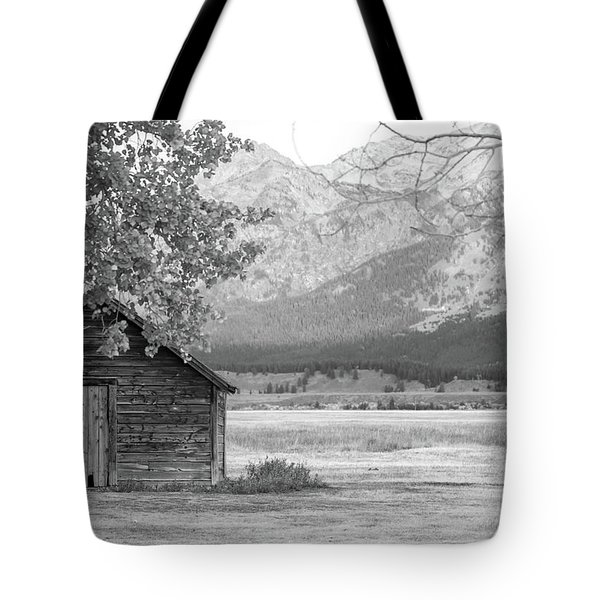 Tote Bag featuring the photograph Moulton Homestead - Granary by Colleen Coccia