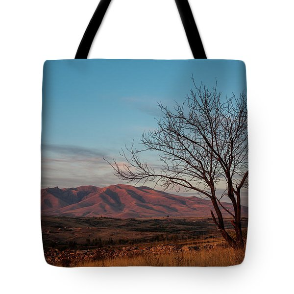 Mount Ara At Sunset With Dead Tree In Front, Armenia Tote Bag