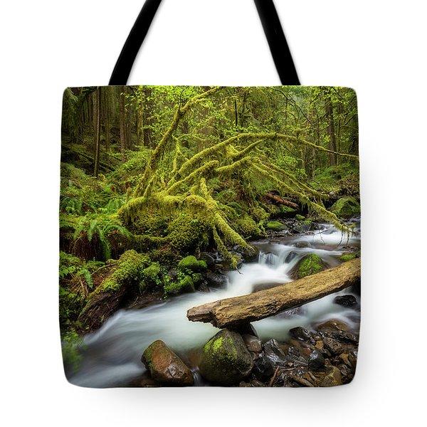 Mount Hood Creek Tote Bag