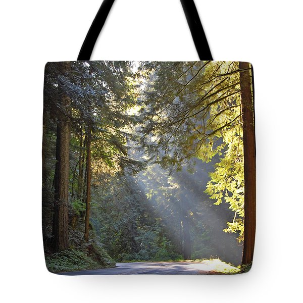 Mount Rainier At Nisqually Tote Bag