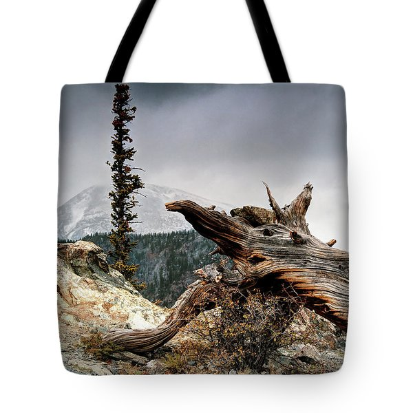 Mount Royal Tote Bag by Jim Hill