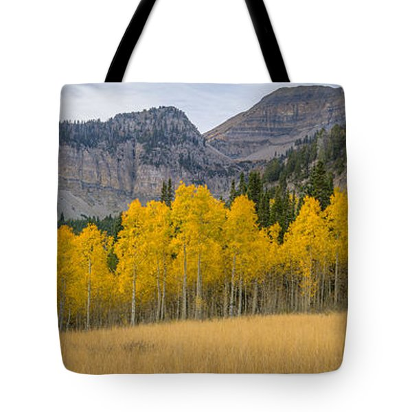 Mount Timpanogos Meadow In Fall Tote Bag