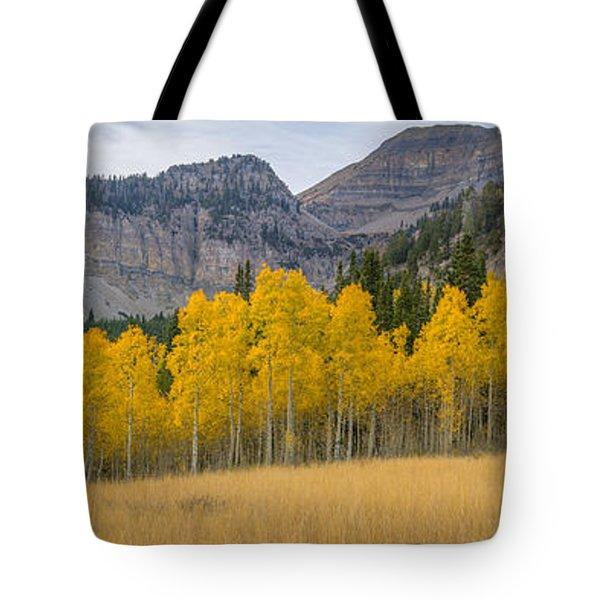 Mount Timpanogos Meadow In Fall Tote Bag