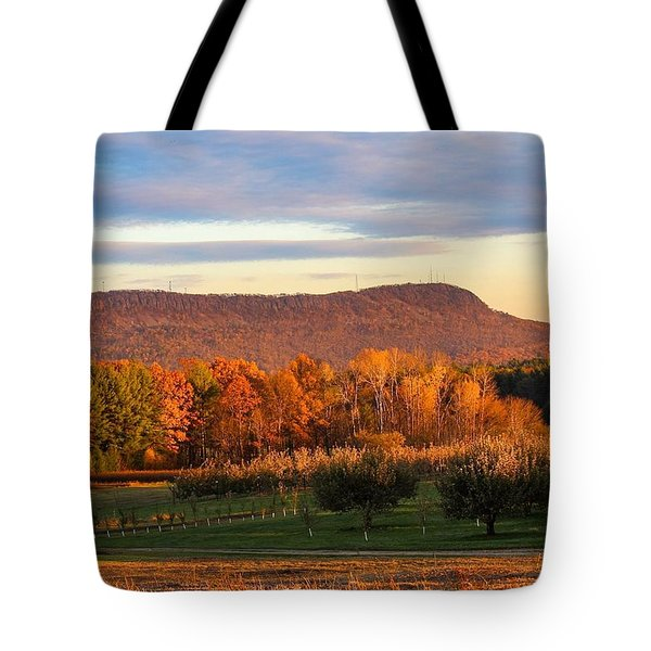 Mount Tom Foliage View Tote Bag