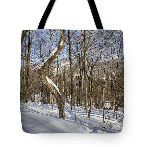 Mount Waternomee - Kinsman Notch New Hampshire Tote Bag