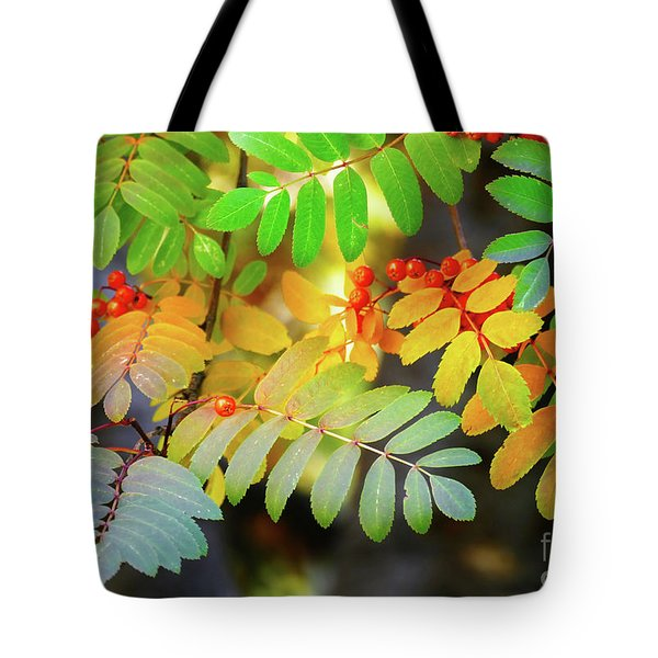 Mountain Ash Fall Color Tote Bag by Michele Penner