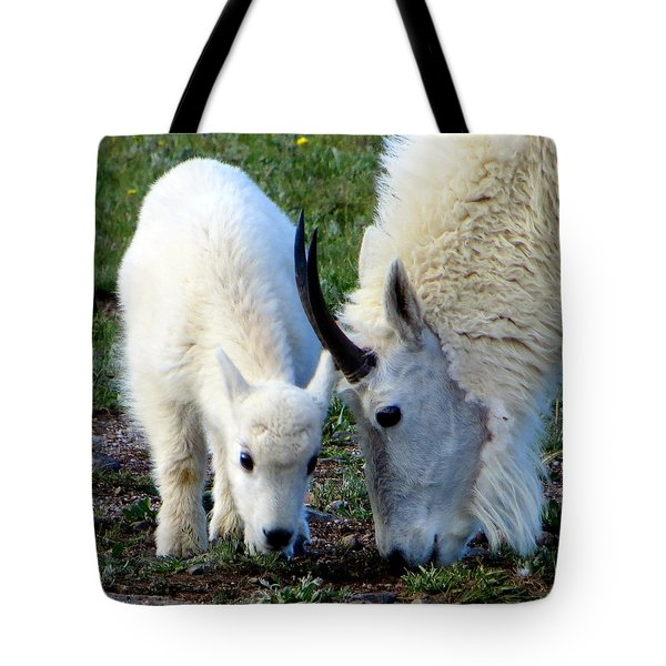 Mountain Baby Tote Bag by Karen Shackles