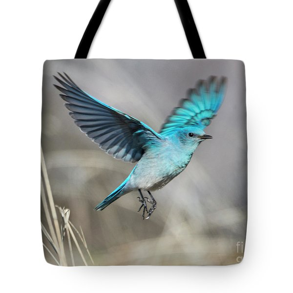 Mountain Blue Tote Bag by Mike Dawson
