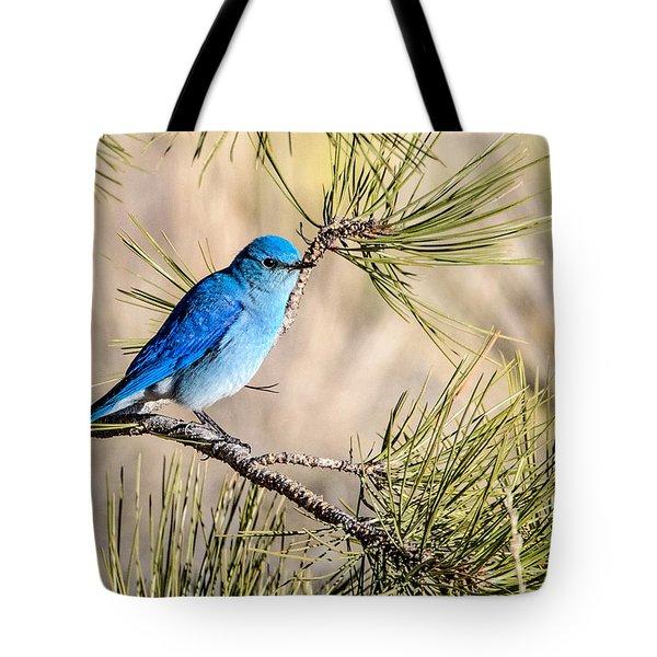Mountain Bluebird In A Pine Tote Bag