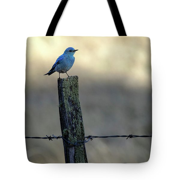 Mountain Bluebird On Wood Fence Post Tote Bag