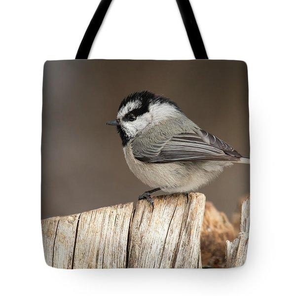 Mountain Chickadee Tote Bag