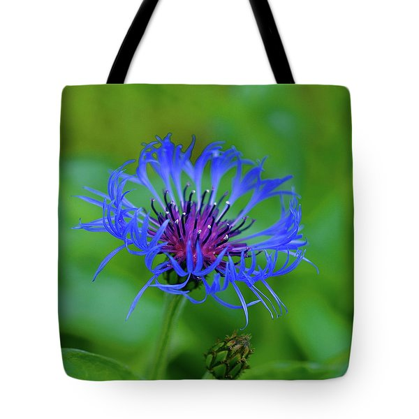Mountain Cornflower Tote Bag