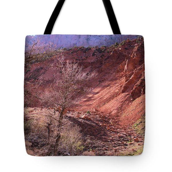 Tote Bag featuring the photograph Mountain Country Of Zion by Viktor Savchenko