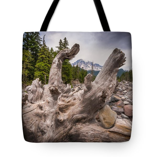 Mountain Dry River Tote Bag by Chris McKenna