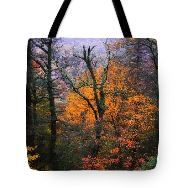 Tote Bag featuring the photograph Mountain Fall Colors by Ken Barrett