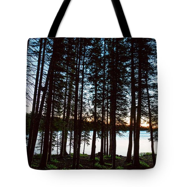 Tote Bag featuring the photograph Mountain Forest Lake by James BO Insogna