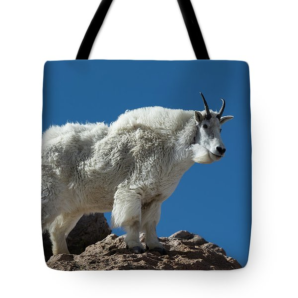 Tote Bag featuring the photograph Mountain Goat 2 by Gary Lengyel
