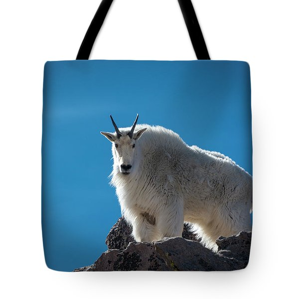 Tote Bag featuring the photograph Mountain Goat 3 by Gary Lengyel