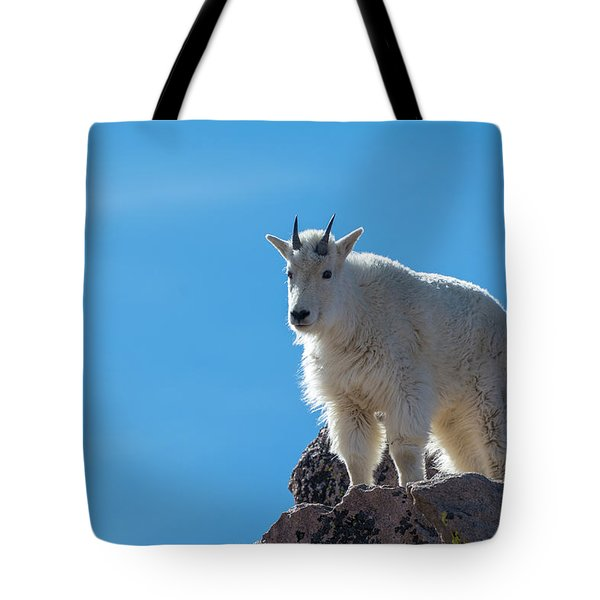 Tote Bag featuring the photograph Mountain Goat 4 by Gary Lengyel