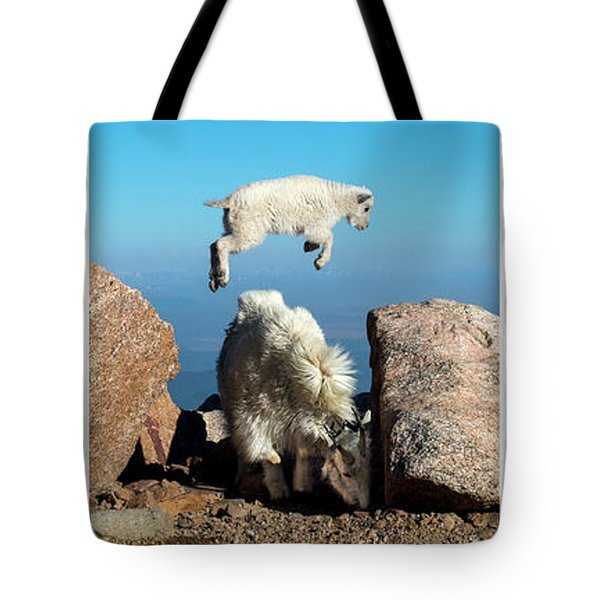Mountain Goat Leap-frog Triptych Tote Bag