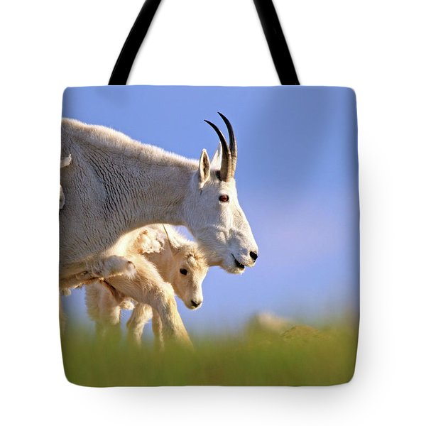Tote Bag featuring the photograph Mountain Goat Light by Scott Mahon